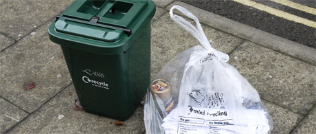 Waste Collection Survey