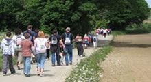 Isle of Wight Walking Festival