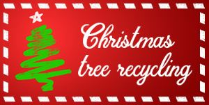 Real Christmas trees will be collected up to a month after the festive period.