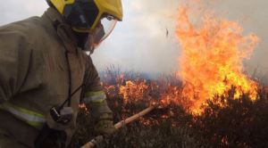 Firefighters on the Island have had to tackle an increasing number of fires in the open in recent weeks