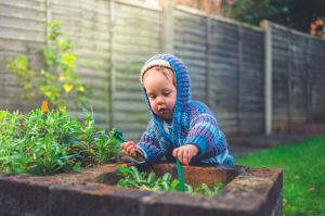 Time to renew your annual garden waste subscription