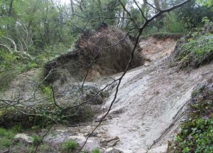 Since the landslip occured, it has moved even further and is now blocking the Esplanade road