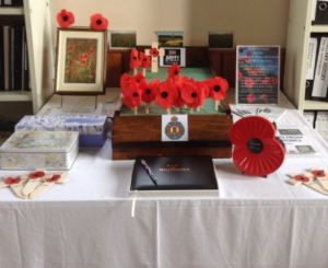 Some of the poppies on display